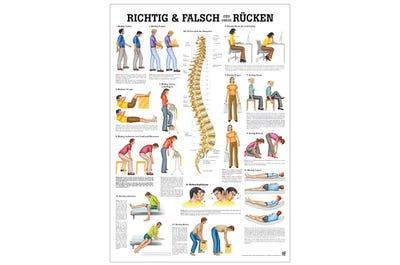 Lehrtafel Richtig & Falsch für Deinen Rücken
