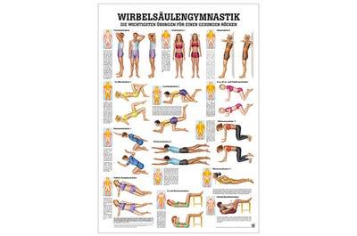 Lehrtafel Wirbelsäulengymnastik