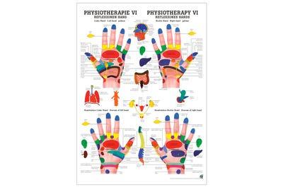 Lehrtafel Reflexzonen Hand